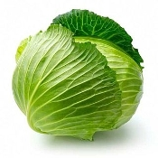 Cabbage Green, Organic by the Head (4lb)