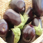 Eggplant Organic individually priced