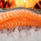 Atlantic Salmon Fillet, Wild Caught 8oz