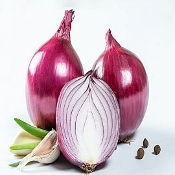 Onions, Red/Purple Organic by the lb.