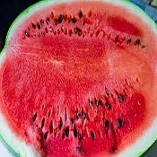 Watermelon- Organically Grown- With Small Seeds (10-15lb)