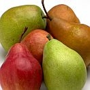 Pears Concord Organic individually priced
