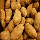 Potatoes Russet Organic (1 or 5lb)